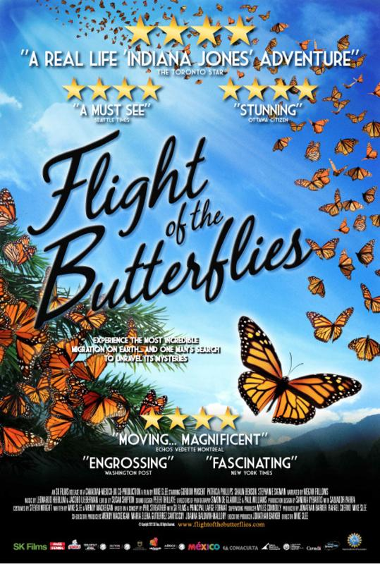 Flight of the Butterflies & Aurora Storm