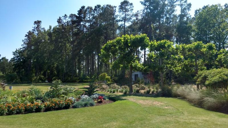 WORKSHOP: Aesthetic Pruning