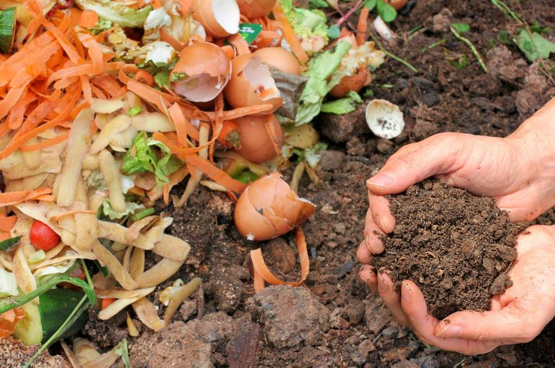 You Can Compost!