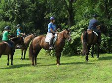 Full Day Horse Camp July 8 thru 11