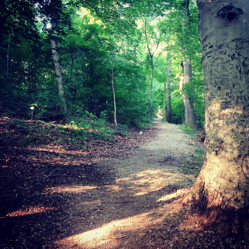 Guided Trail Runs in Philly's Parks