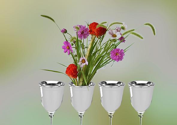 Passover Women's Seder