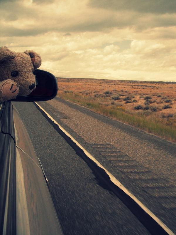 Adventure Tots: Roadtrip Across America (3-6 years) @ Roy and Helen Hall