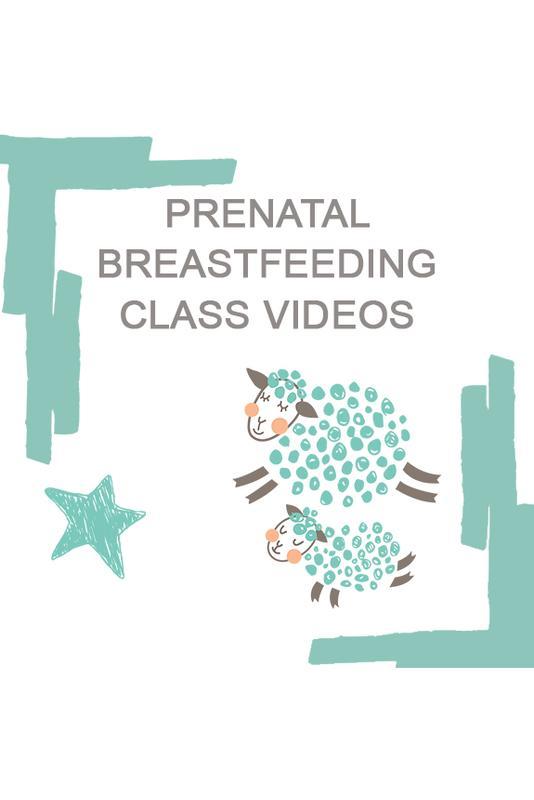 Prenatal Breastfeeding Class Videos