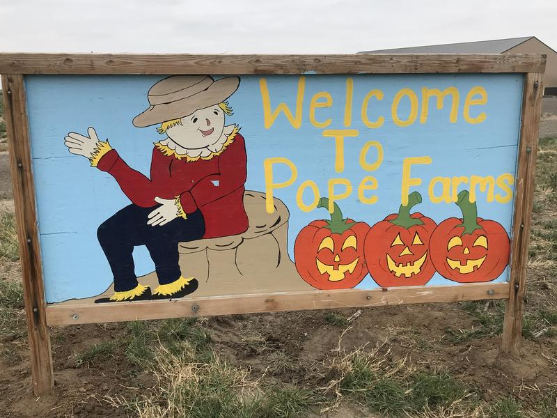 Pope Farms Corn Maize & Pumpkin Patch