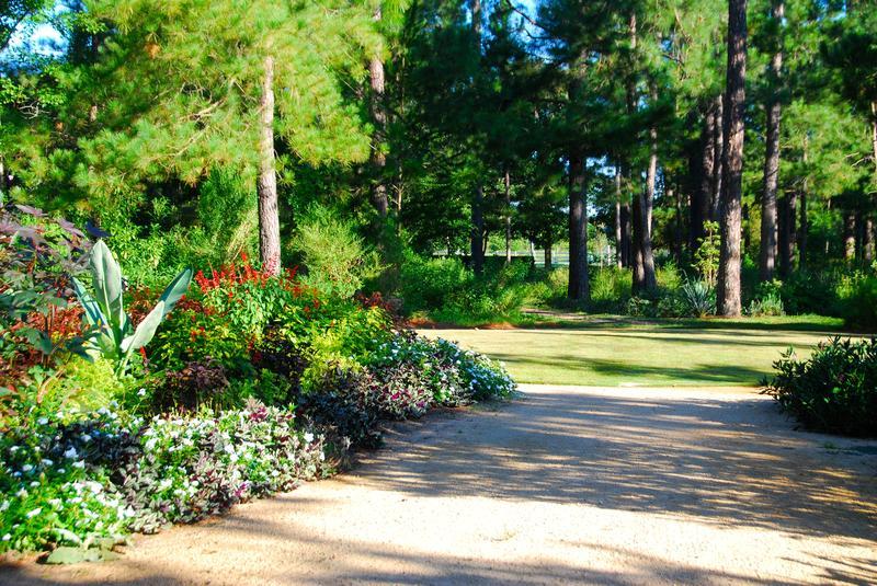 Garden Open: Stroll in September