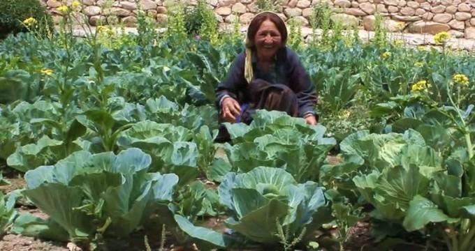 SimPLife: Bio-Organic Farming & Gardening- GROW Your OWN FOOD