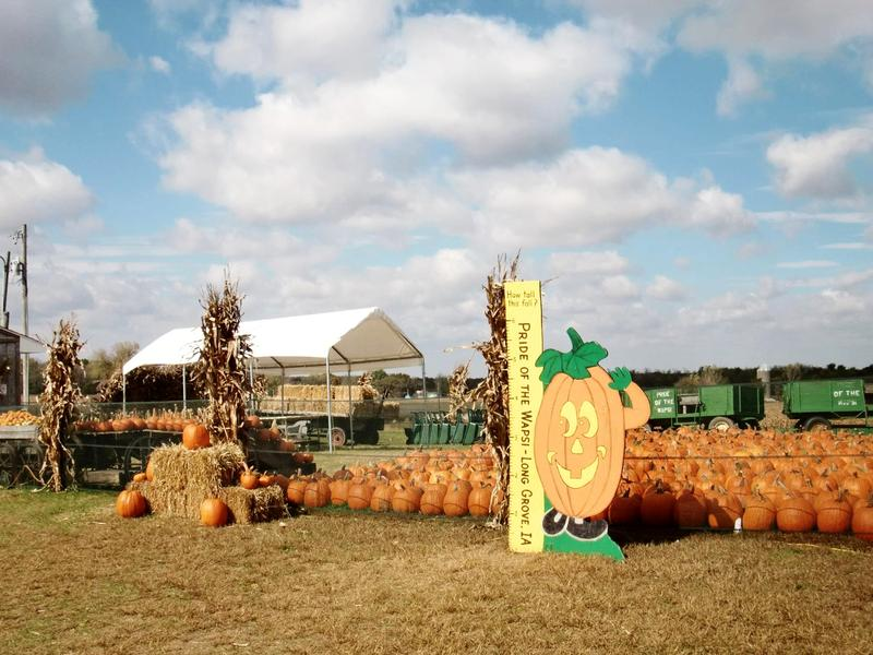 2018 Pride of the Wapsi Pumpkin Patch & Corn Maze