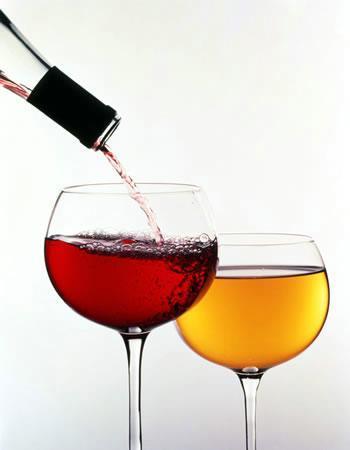 Wine Class: Wine 101 - Basics of Wine